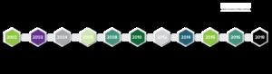 Medsource Labs Timeline